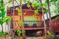 sitawani jungle resort and spa pine wood cottages jim corbett