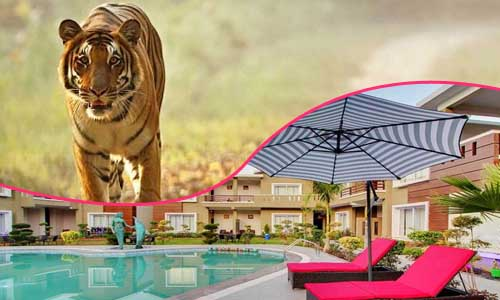 Corbett resorts packages