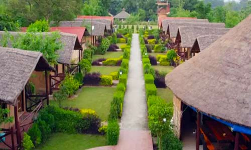 forest resort in corbett