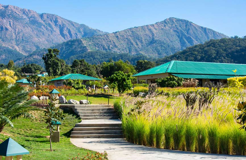 Top 5 star luxury resorts in Jim Corbett National Park