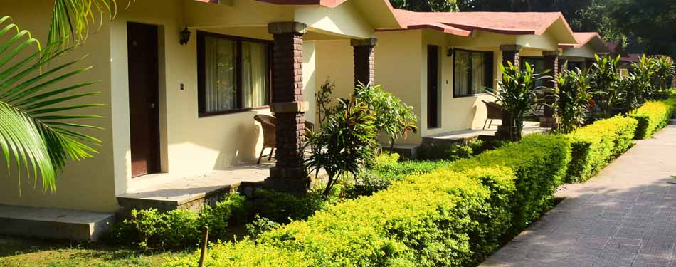 best riverside resorts in corbett national park