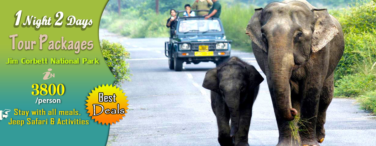 Online book top resorts in Jim Corbett National Park and get special offer on Corbett best resorts